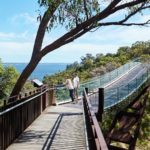 Kings Park walkway with Perth Platinum Tours